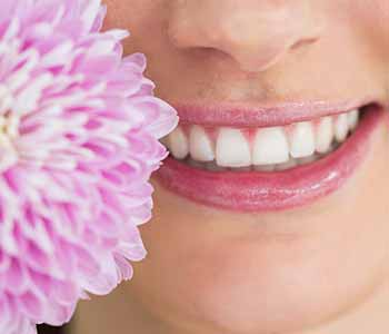 """South Lakewood Dental Lakewood patient asks, """"Which dentist is practicing holistic dentistry?"""""""