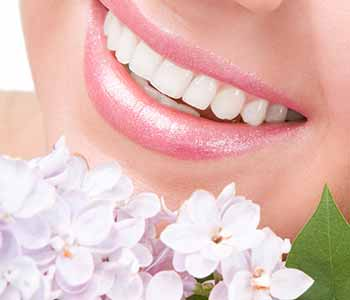 South Lakewood Dental Where can I find a holistic dentist near me in the Lakewood area?